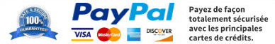 footer paypal